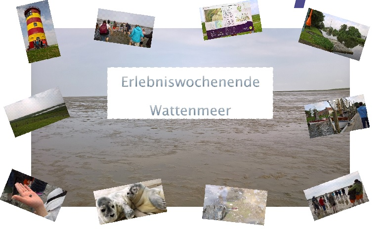 foto wattenmeer collage